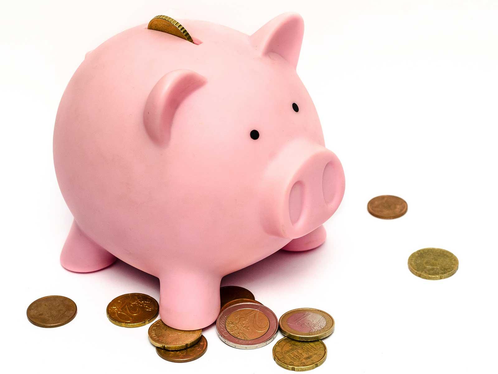 Schuldsanering Nederland helpt u bij uw inkomsten en uitgaven